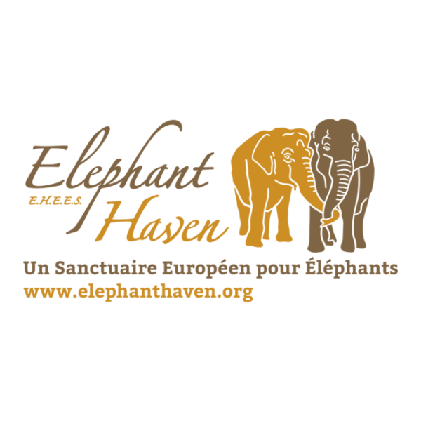 Logo sanctuaire Elephant Haven