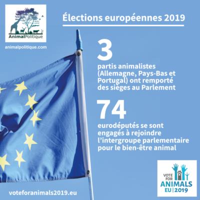 Résultats des élections européennes ! Les animaux enfin représentés !