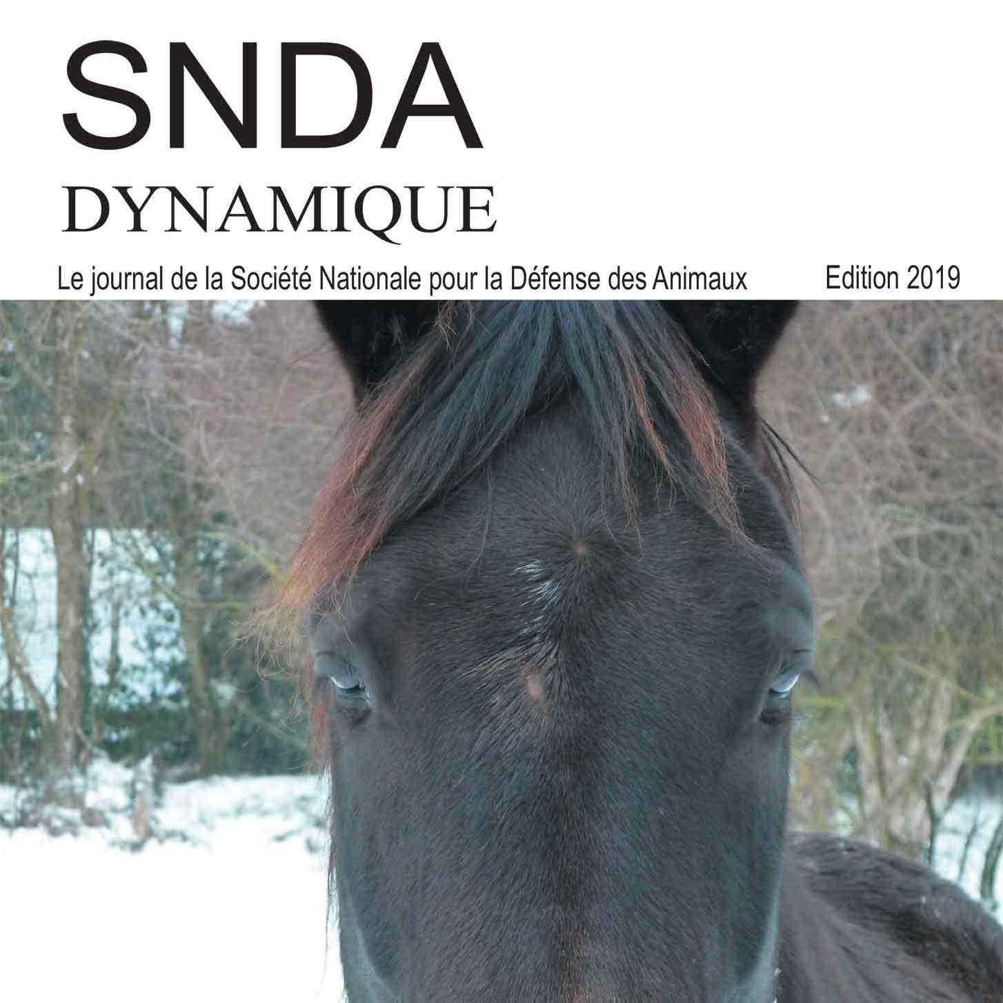 Dynamique 2019, le journal de la SNDA