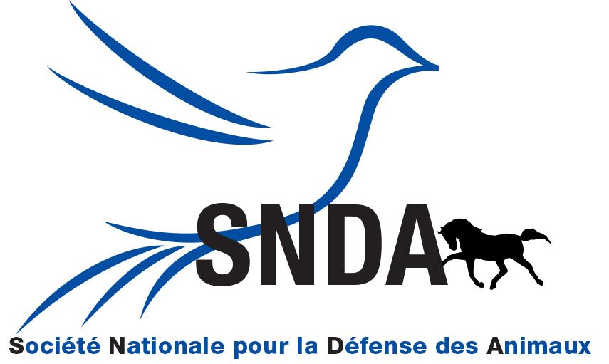 Logo SNDA bleu