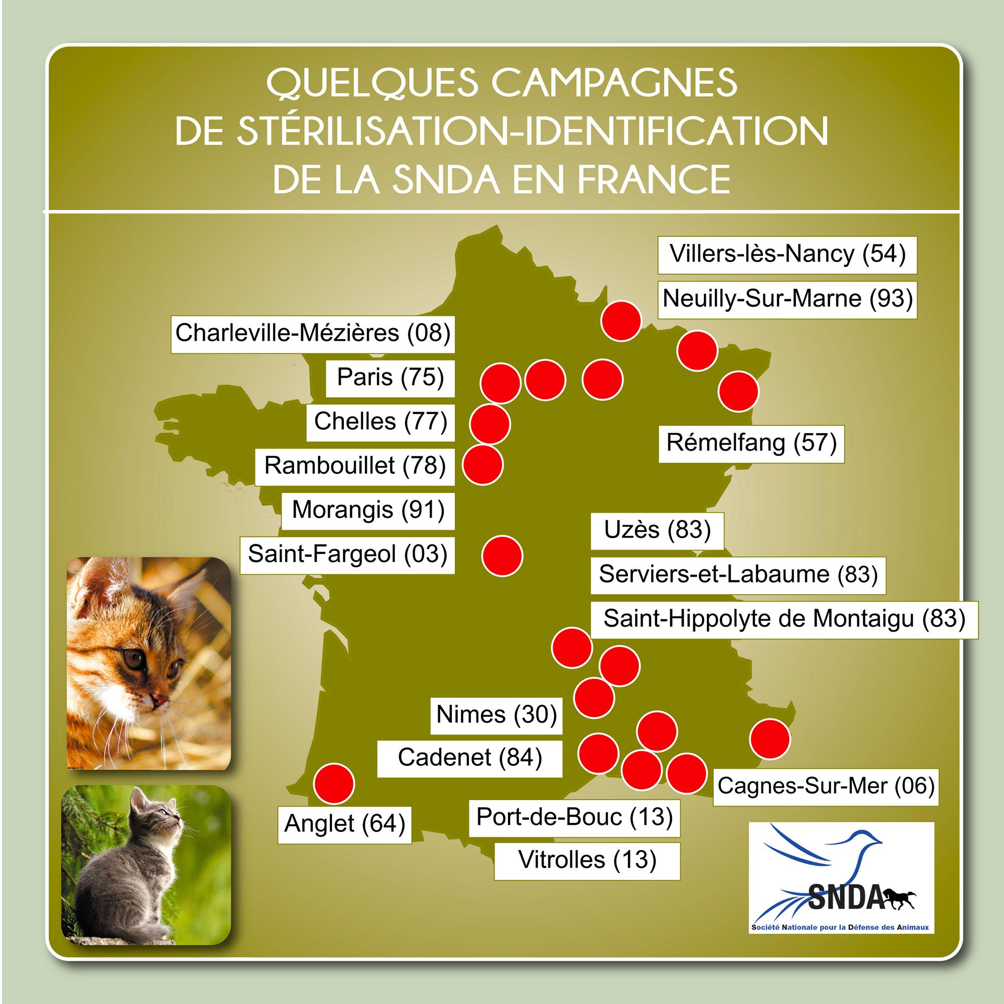 Les campagnes de stérilisations effectuées en France en 2019
