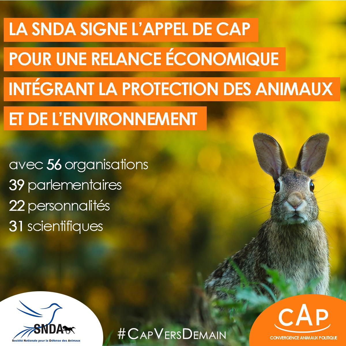 La SNDA signe l'appel pour une relance économique intégrant la protection des animaux et de l'environnement
