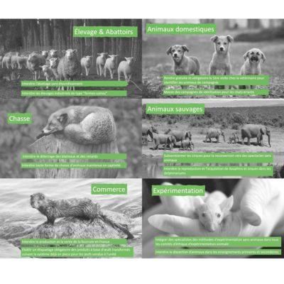 Vingt mesures pour les animaux, une évaluation utile